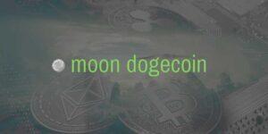 Партнерская программа Moon dogecoin