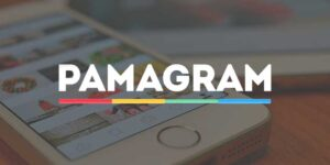 Партнерская программа Pamagram