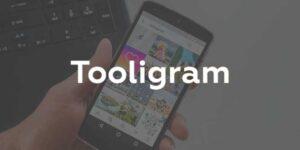 Партнерская программа Tooligram